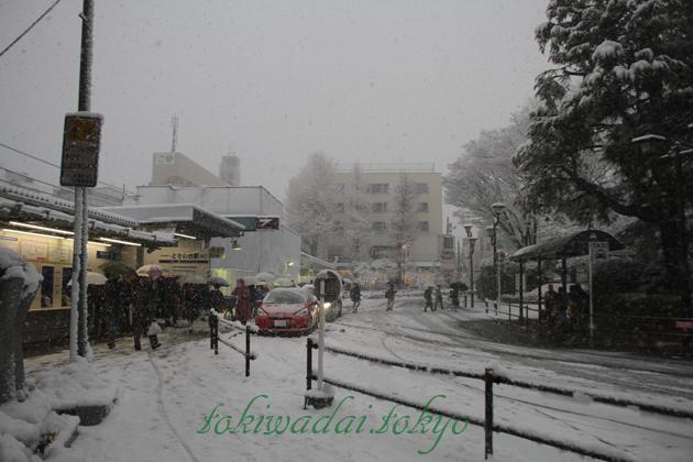ときわ台、雪、タクシー乗り場
