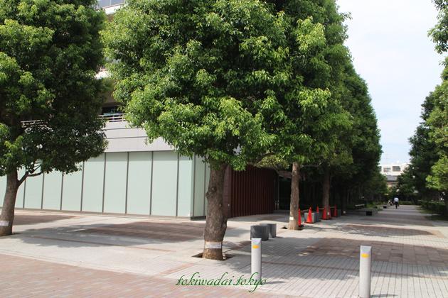 常盤台ガーデンソサエティ(TOKIWADAI GARDEN SOCIETY)